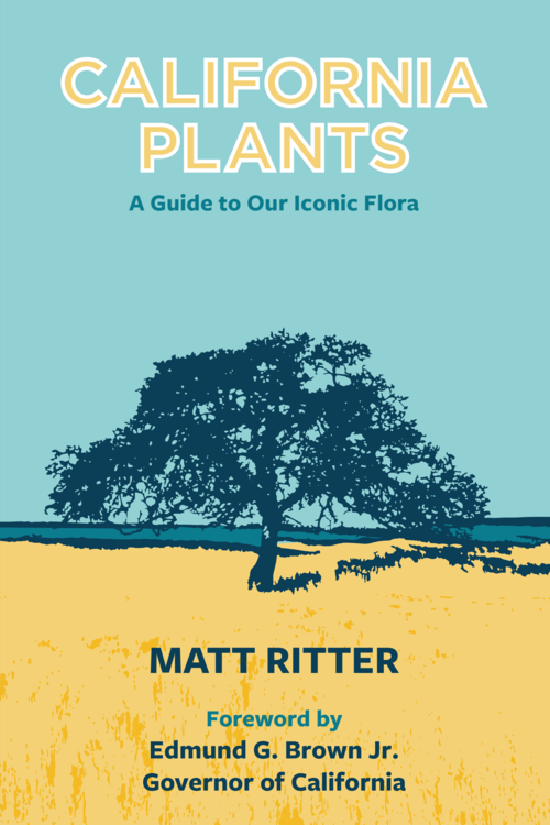 Matt Ritter book cover